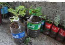 VermiChar Eco-fertilizers subsistence Garden
